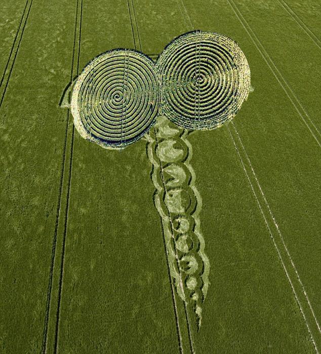 real crop circles 2013 wwwpixsharkcom images